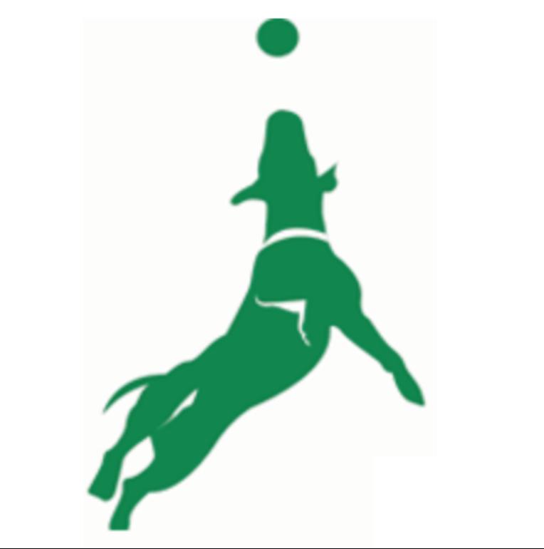 Green Dog Enterprises